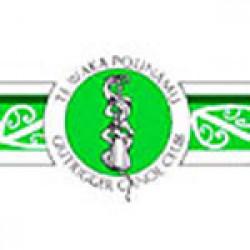 Te Waka Pounamu